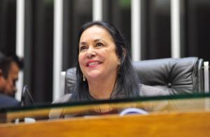 Após um mandato na Assembleia Legislativa capixaba e seis na Câmara Federal, Rose de Freitas chega ao Senado (foto: Assessoria Câmara Federal)
