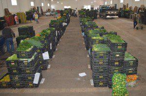 O PAA é uma iniciativa do governo federal e coordenado pela Companhia Nacional de Abastecimento (foto: Arquivo)
