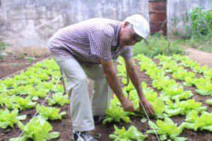 Aos 72 anos, curado de dois cânceres, Xisto cuida voluntariamente da horta do Núcleo do Câncer