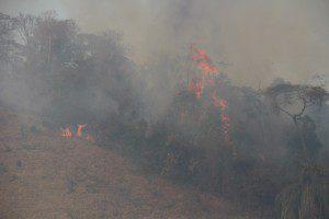 De acordo com dados do Portal de Monitoramento de Queimadas e Incêndios, do dia 1º de outubro até a data de ontem, já foram registrados 185 focos de incêndio em Caratinga