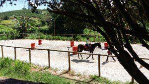 Centro possui os núcleos, como o Centro Equestre e Animal