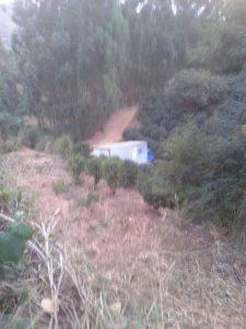 Caminhão desceu uma ribanceira de 50 metros