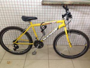 Bicicleta tinha sido furtada no último dia 2