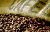 Conab estima 44,77 milhões de sacas para safra do café