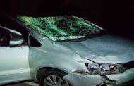Durante corte, árvore cai e atinge carro